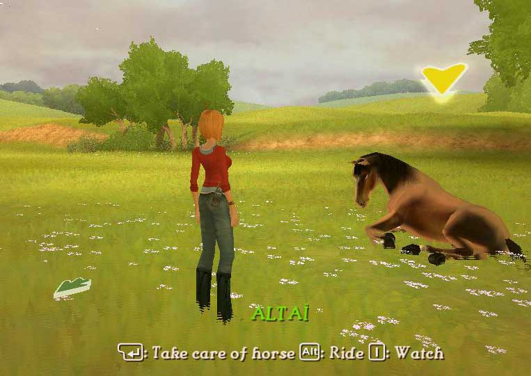 Taking care of horse in imagine chion rider